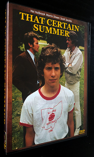 Large_dvd_thatcertainsummer